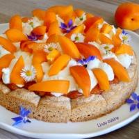 Tarte aux abricots sur dacquoise et chantilly mascarpone à la fleur d'oranger